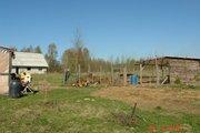 Сдам или продам  20ГА земли КФХ в 250 км от Москвы